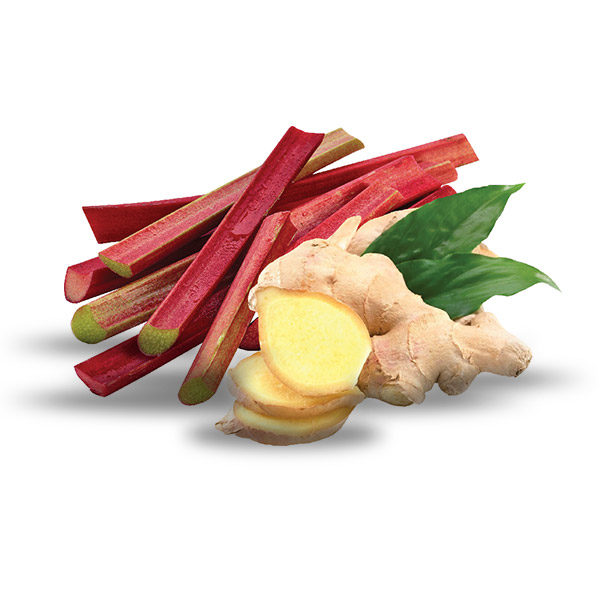 Rhubarb-and-Ginger